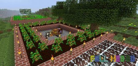Forestry [1.6.4]