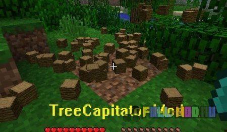 [1.6.1]TreeCapitator